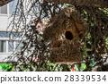 dwelling, bird, wood 28339534