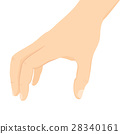 Male Hand Isolated 28340161