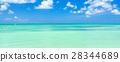 海滩 阿鲁巴 加勒比海 28344689