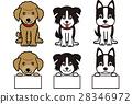 개 이름 카드 28346972