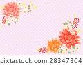 天竺牡丹 樱花 樱桃树 28347304