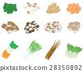 蔬菜 插圖 插畫 28350892