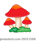 mushroom isolated illustration 28351566