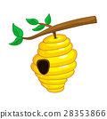 beehive hanging from a branch 28353866