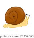 snail 28354063