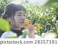 一个女人闻着柠檬的味道 28357391