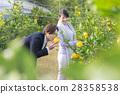 男女觀光種植園 28358538