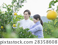 Men and women sightseeing plantations 28358608