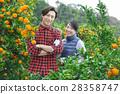 couple, farmer, farmhouse 28358747