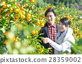 Men and women sightseeing plantations 28359002