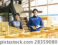 couple, agricultureh, farmer 28359080