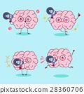 大脑 头脑 乐趣 28360706