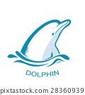 海豚 商标 矢量 28360939