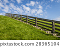 Dike in Friesland with Stairs 28365104