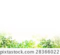 陽光透過天紋理背景材料 28366022