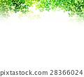 陽光透過天紋理背景材料 28366024