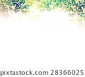 翠綠 鮮綠 葉子 28366025