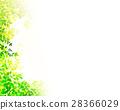 陽光透過天紋理背景材料 28366029