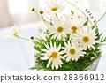마가렛의 꽃다발 28366912