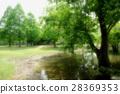 公園 翠綠 鮮綠 28369353