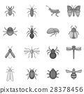 insect, icons, set 28378456