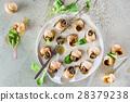 food snail dish 28379238