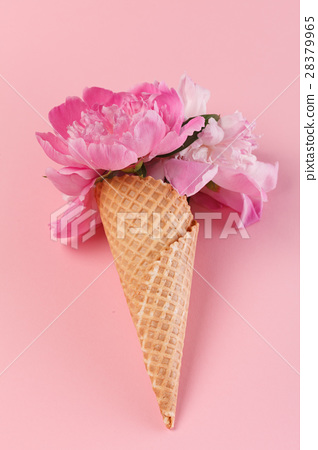 peony flowers in the waffle cone 28379965