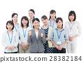 臨時工作人員 團隊 事業女性 28382184