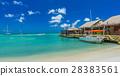 Palm beach at Aruba island 28383561