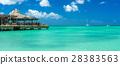 Palm beach at Aruba island 28383563