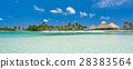 Flamingo beach at Aruba island 28383564