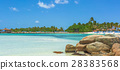 Flamingo beach at Aruba island 28383568