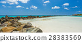 Flamingo beach at Aruba island 28383569