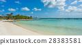 Flamingo beach at Aruba island 28383581