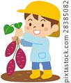 孩子們挖土豆 28385082