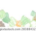 vegetables, vegetable, winter vegetables 28388432