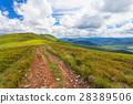 sky, hill, meadow 28389506