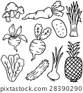 Hand draw doodle vegetable and fruit 28390290