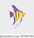 Vector illustration in flat style angelfish 28390786