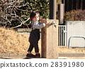 公園 玩耍 演奏 28391980