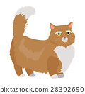 Munchkin cat Vector Flat Design Illustration 28392650