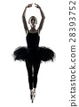 Ballerina dancer dancing woman  isolated silhouett 28393752