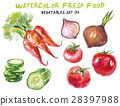 watercolor, vegetable, white 28397988