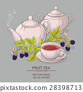blackberry tea vector illustration 28398713