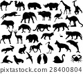 Animals silhouettes collection 28400804