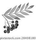 Rowan branch icon, gray monochrome style 28408180