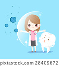 woman dentist protect tooth 28409672
