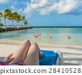 Flamingos beach in Aruba. Young woman resting 28410528