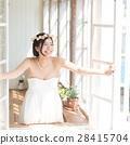 婚禮新娘新娘圖像 28415704