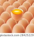 eggs background with yolk 28425229